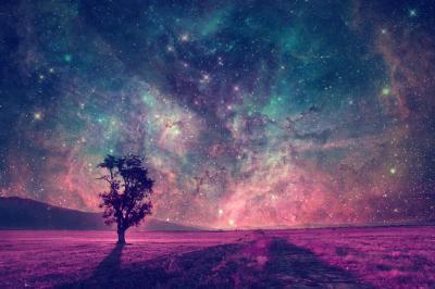 Obraz Purpurowa polana