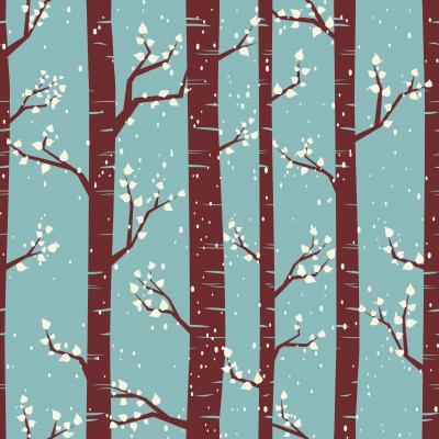 Fototapeta Zimowy wzór z brzozy
