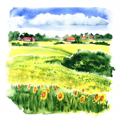 Obraz Village landscape with sunflower field and country houses