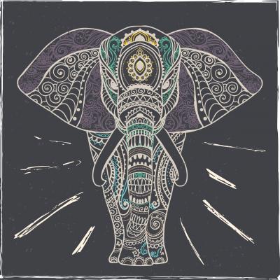 Fototapeta Frame of elephant