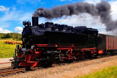Fototapeta Historical German steam train passes through the fields
