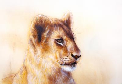 Plakat Little lion cub head