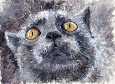 Painting gray cat