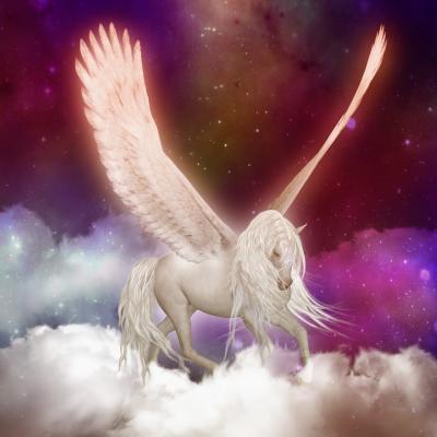 Fototapeta Pegasus