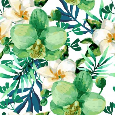 Tapeta Tropical watercolor floral seamless pattern with orchid flowers