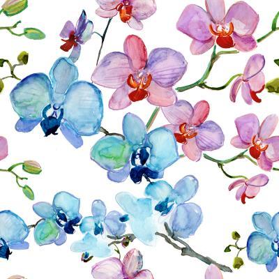 Tapeta Seamless pattern of orchids