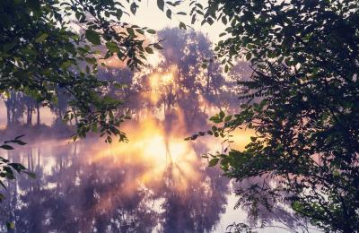 Fototapeta Unusual river fog in summer season