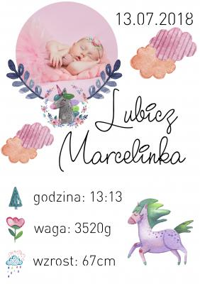 Plakat Dziewczęca metryczka jednorożec