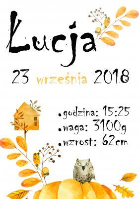 Plakat Metryczka z sową