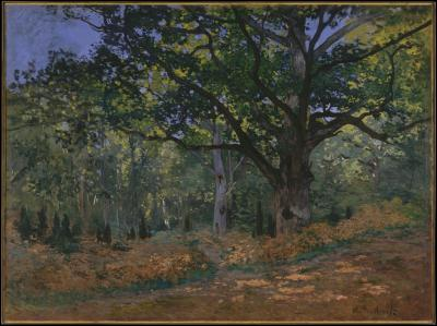 Obraz Claude Monet - Dąb Bodmera w lesie Fontainebleau