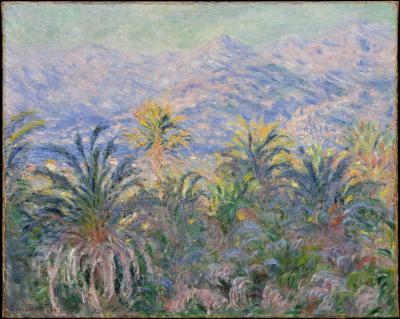 Obraz Claude Monet - Palmy w Bordighera
