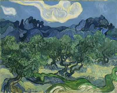 Obraz Vincent van Gogh - Drzewa oliwne z Alpilles w tle