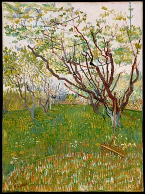 Vincent van gogh - kwitnący sad