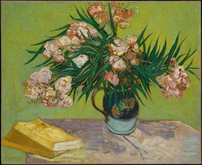 Vincent van gogh - oleandry