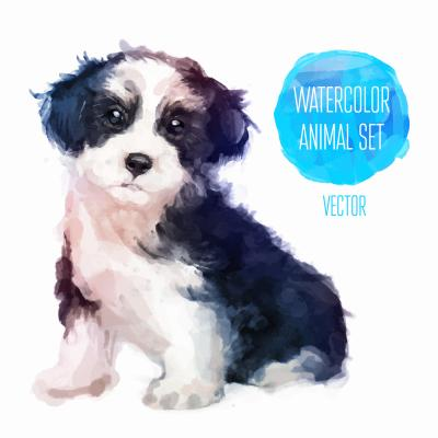 Dog hand painted watercolor illustration isolated on white background