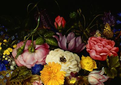 Fototapeta Kolorowy bukiet kwiatów