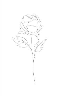 Plakat Kwitnący kwiat