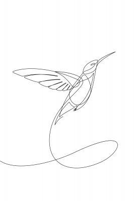 Plakat Lecący koliber