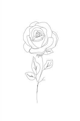 Plakat Minimalistyczna róża