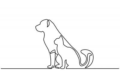 Plakat Portret psa i kota