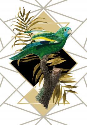 Plakat Stadniczka białoskrzydła na złotym liściu