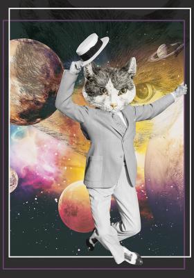 Plakat Kot we wszechświecie