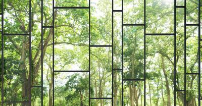 Fototapeta Duże okno z widokiem na otaczający ogród i przyrodę 1
