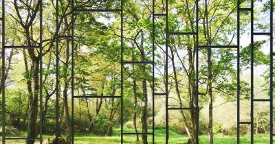 Fototapeta Duże okno z widokiem na otaczający ogród i przyrodę 2