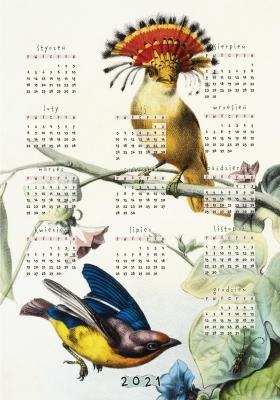 Plakat Kalendarz 2021 kolorowe ptaki