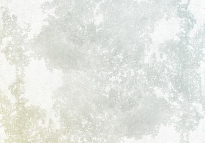 Fototapeta Dwukolorowy deseń z teksturą