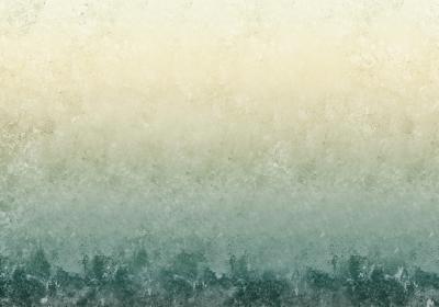 Fototapeta Morski wzór cieniowany