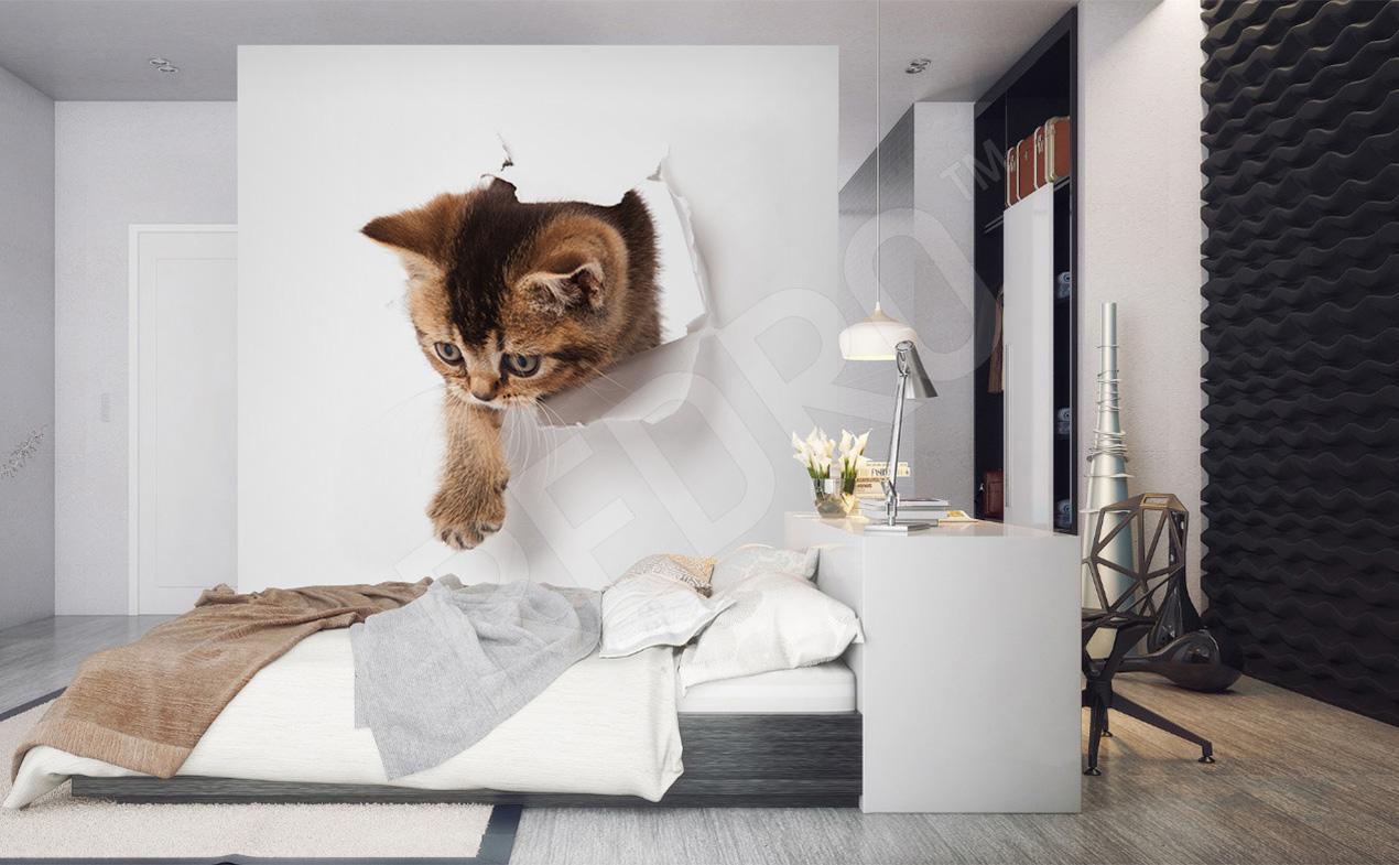 Fototapety Kot ścienne Na Wymiar Redropl