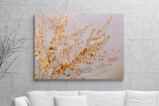 Obraz - Suszone kwiaty