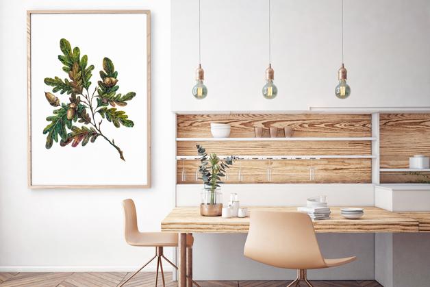 Plakat - Botanika