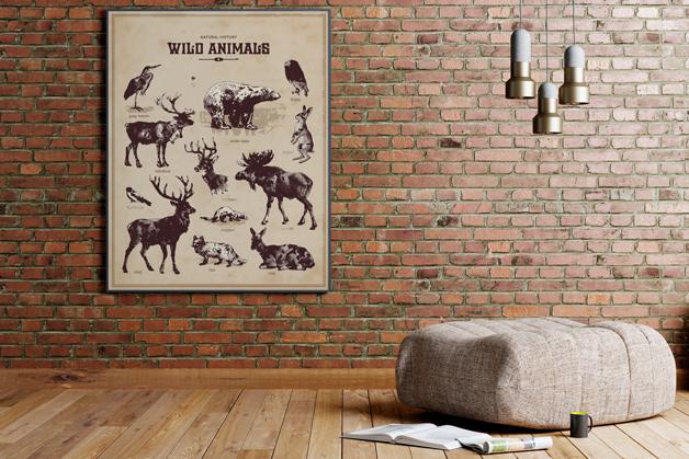 Plakat - Dzikie zwierzęta