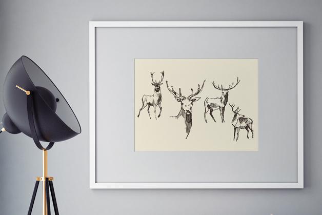Plakat - Szkic jelenia