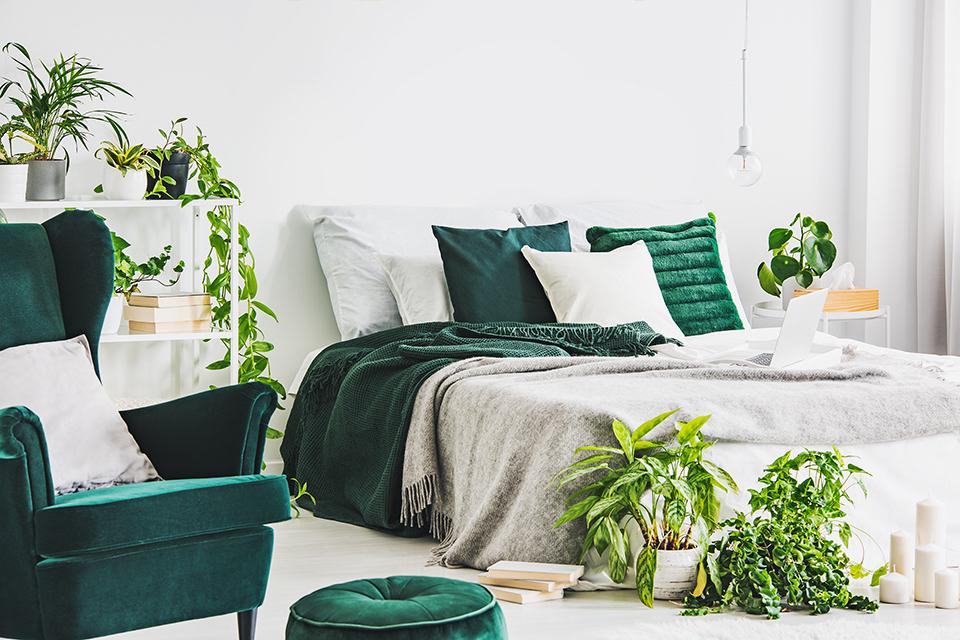 Zielone meble i tekstylia