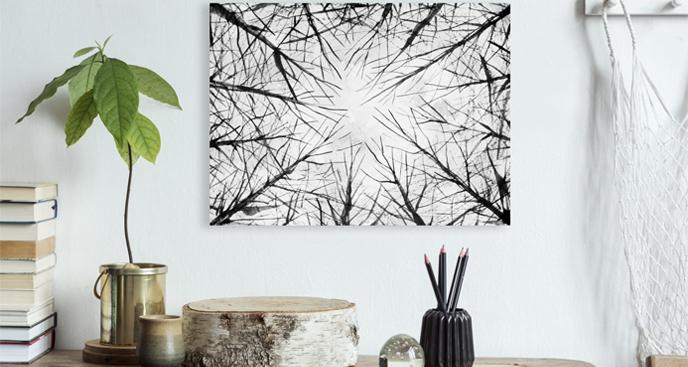 Czarno-biały obraz z drzewami