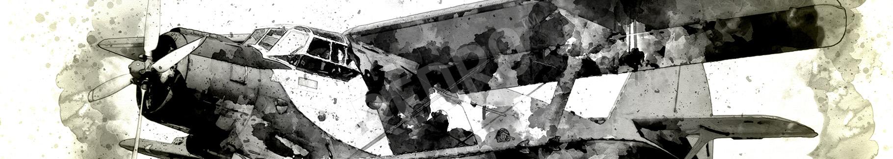 Czarno-biały obraz z samolotem
