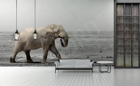 Fototapeta Afryka słoń