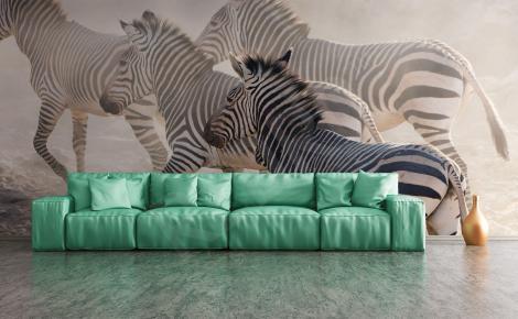 Fototapeta Afryka zebry