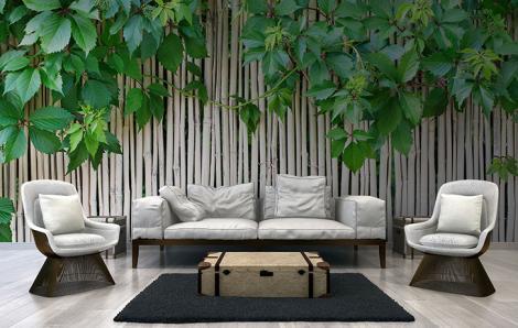 Fototapeta bambus do salonu
