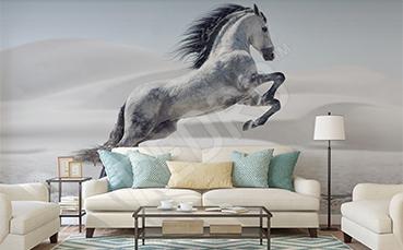 Fototapeta biały koń do salonu