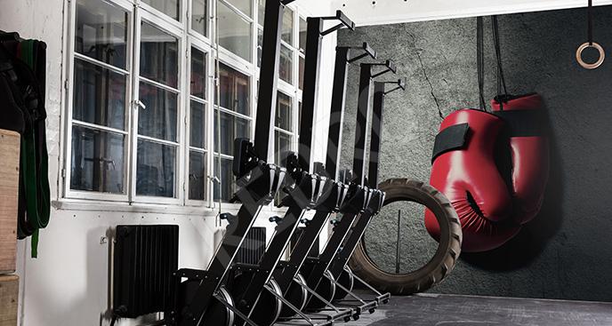 Fototapeta boks do siłowni
