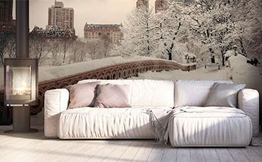 Fototapeta Central Park zimą