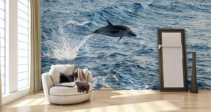 Fototapeta delfin 3D