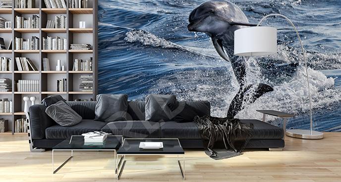 Fototapeta delfin oceaniczny