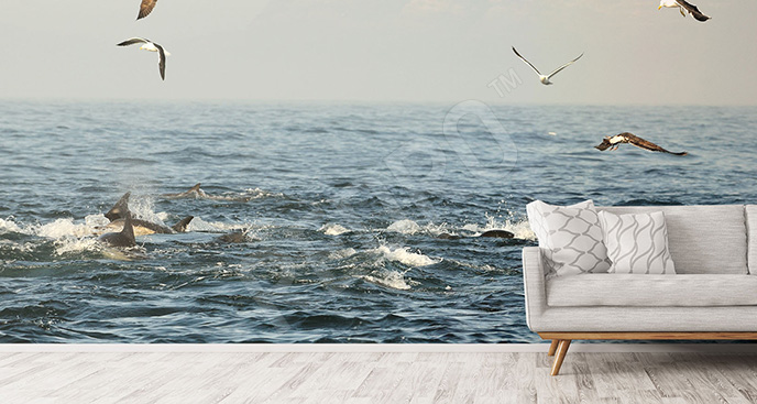 Fototapeta delfiny i ptaki