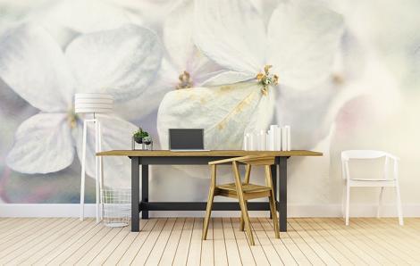 Fototapeta do biura białe kwiaty