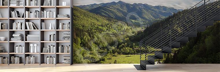 Fototapeta do księgarni - krajobraz